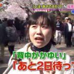 PON! ブルゾンちえみが突撃インタビュアー初挑戦!新川優愛、平祐奈の秘密に迫る 20170406