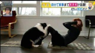 直撃LIVE グッディ! 20170418