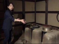 ガリレオX「キッチン変遷史 台所からシステムキッチンへ」 20170429