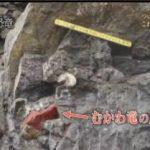 NHKスペシャル「世紀の発見!日本の巨大恐竜」 20170507