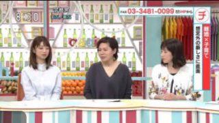 あさイチ「女性リアル 離婚×子育て」 20170508