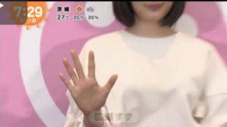 めざましテレビ 20170511