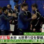 SPORTSウォッチャー▽超速報!卓球・水谷&テニス錦織 ベスト8は!? 20170512