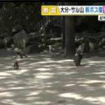 直撃LIVE グッディ! 20170515