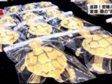 """クローズアップ現代+「金塊・闇の""""錬金術""""~私たちの税金が奪われる~」 20170523"""