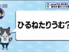 猫のひたいほどワイド▽僕の悩みも解決!左利きグッズ店に潜入(相模原市中央区) 20170525