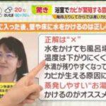 ビビット パトカーとすれ違い…急発進 元アイドル田中聖容疑者を大麻所持で逮捕 20170526