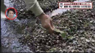 猫のひたいほどワイド▽目指せ海の王子!発祥の地でサーフィンに挑戦(藤沢市) 20170613