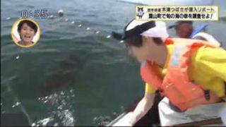 猫のひたいほどワイド▽路線バス終点めぐりの旅~観音崎・後編~(横須賀市) 20170615