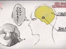 歴史秘話ヒストリア「舞う 逃げる 謝る 信長のピンチ脱出術」 20170617