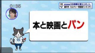 猫のひたいほどワイド▽北海道も惚れた味!とうもろこし収穫のお手伝い(綾瀬市) 20170627
