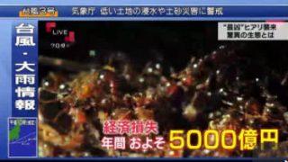 """クローズアップ現代+「徹底追跡 """"最凶アリ""""襲来」 20170704"""