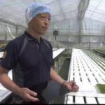 """ハートネットTV「農業と福祉が出会ったとき何が起きる?▽""""農福連携""""の可能性」 20170711"""