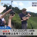 Newsモーニングサテライト【緑茶ブームで世界市場に挑む】 20170712