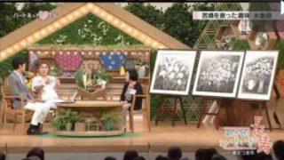 ハートネットTV めざせ!いきいき長寿「鹿児島県 南さつま市」 20170713
