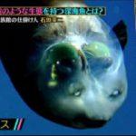 クレイジージャーニー 世界を巡る水族館の仕掛け人&超レア深海魚 20170727