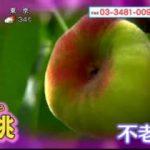 """あさイチ「旬到来!""""桃""""の究極の食べ方、教えます!」 20170731"""