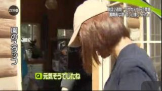 "NEWS ZERO 不明の""ゾウガメ""発見…懸賞金50万円は 20170816"