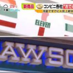 ビビット 元マラソン日本代表の女、コンビニ万引きで逮捕…何が? 20170818