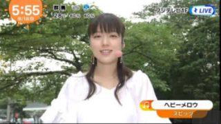めざましテレビ 20170818