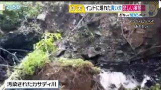 直撃LIVE グッディ! 20170818