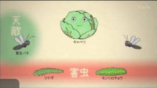 ガリレオX「植物が会話する!?」 20170819