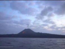 世界遺産「小笠原諸島の知られざる世界」 20170820
