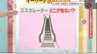 あさイチ「JAPA-NAVI 愛知県岡崎市」 20170824