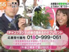めざましテレビ 20170828