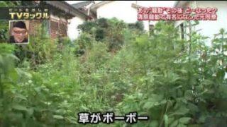 ビートたけしのTVタックル 20170903