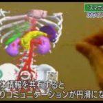 ニュースウオッチ9▽O157検出の女児死亡・感染の怖さ▽台風が3連休直撃? 20170913