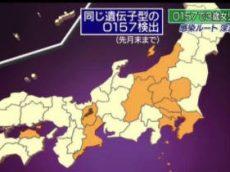 ニュースウオッチ9▽広島カープ・放送中に優勝か…最新情報▽O157新たな謎 20170914