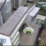 """NEWS23 """"小池新党""""で波乱も…仁義なき選挙戦へ号砲 20170926"""