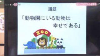 ハートネットTV「静かで、にぎやかな学校~手話で学ぶ明晴学園~」 20171002