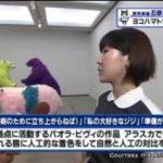 """猫のひたいほどワイド▽美味しい""""はるみ""""が食べたい!米づくりに挑戦!稲刈り編 20171002"""
