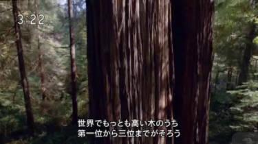 プラネットアース 絶景・天空の旅「森林・草原」 20171016