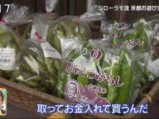 朝だ!生です旅サラダ ジローラモ流大人な京都の遊び方!世界遺産・ビクトリアの滝 20171028