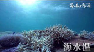 テレメンタリー2017「海の森が消える日~サンゴ再生への挑戦~」 20171105