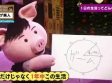ねほりんぱほりん「ネトゲ廃人」登場!1日20時間以上、衝撃の実態を掘れ! 20171108