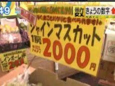 Newsモーニングサテライト【シャインマスカット 価格急騰の理由は?】 20171108