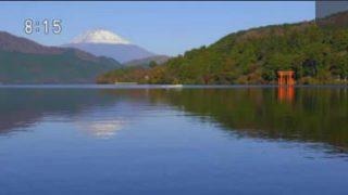 小さな旅「照葉の森 色つづる~神奈川県 箱根町~」 20171203