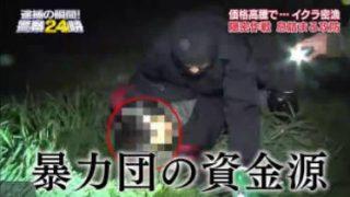 ニチファミ!・逮捕の瞬間!警察24時 20171203