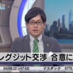 Newsモーニングサテライト【変わる農作物の流通 珍しい野菜に商機アリ!?】 20171205