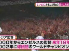 S☆1 緊急特集!大谷翔平エンゼルス決定SP&スピードスケート徹底解説 20171209