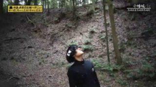 中島卓偉のお城へ行こう!せーの、キャッスル!キャッスル!「小幡城」 20180103