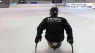 ハートネットTV▽あと2か月!冬のパラリンピック(4)パラアイスホッケー 20180111