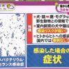 ノンストップ!【電撃引退ももクロ生出演▽猫から?感染症で死亡▽済州島リゾート】 20180116