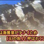 おにぎりあたためますか▽新年一発目は富士山を見に行こう!(静岡)7 20180125