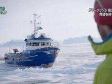 地球ドラマチック「グリーンランド~極北の海に潜る~」 20180128
