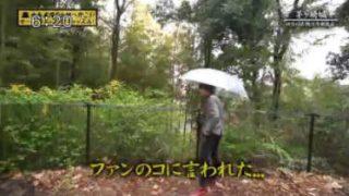 中島卓偉のお城へ行こう!せーの、キャッスル!キャッスル!「茅ヶ崎城」 20180130
